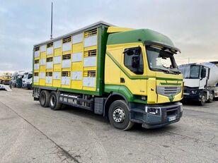 RENAULT PREMIUM 460  camión para transporte de ganado siniestrado